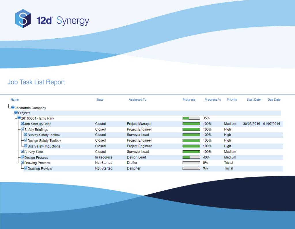 12d Synergy 4.2 New Task Report